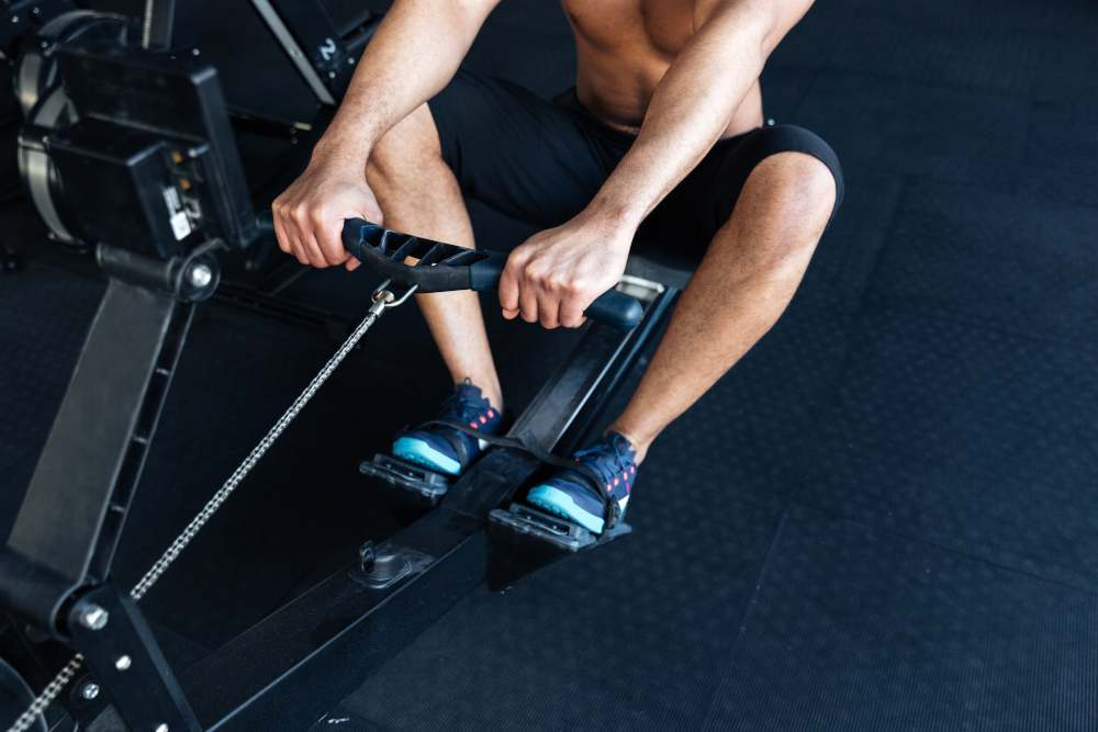 quali muscoli interessa il vogatore
